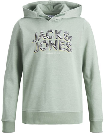 Jack & Jones Junior Hoodie JORVENICEBEACH green milieu 12175558