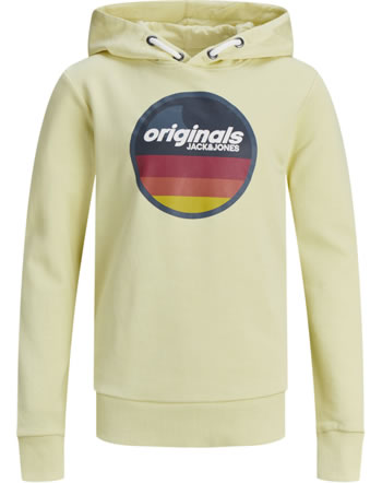 Jack & Jones Junior Hoodie JORVENTURE flan 12168371