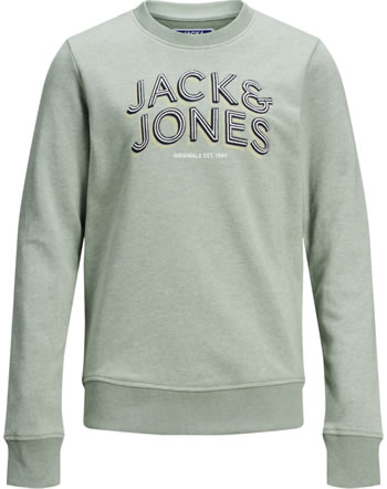 Jack & Jones Junior Sweatshirt JORVENICEBEACH green milieu 12171736