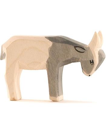 Ostheimer petite chèvre