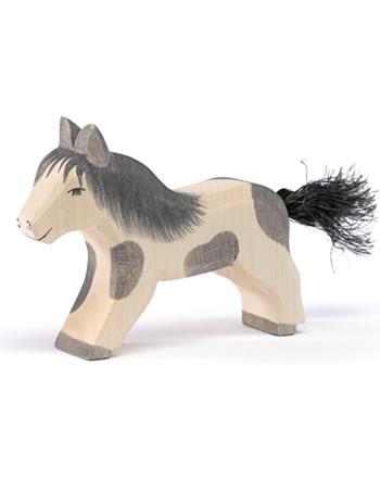 Ostheimer Shetland Pony running