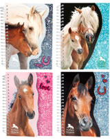 Horses Dreams Notizbuch Pailletten-Optik