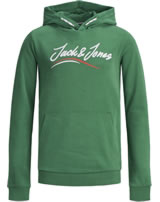 Jack & Jones Junior Hoodie Kapuzenpullover JORFLEXX fir 12168372