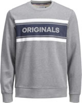 Jack & Jones Junior Sweatshirt light grey melange 12159313