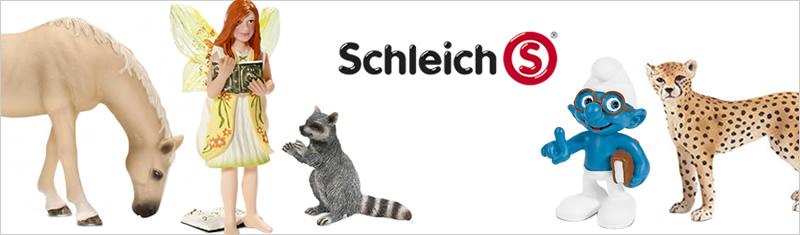 imagebild-sschleich-06-2013.jpg