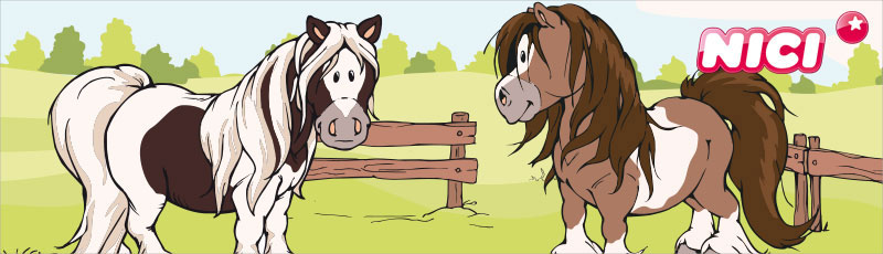 nici-pony-poniat.jpg